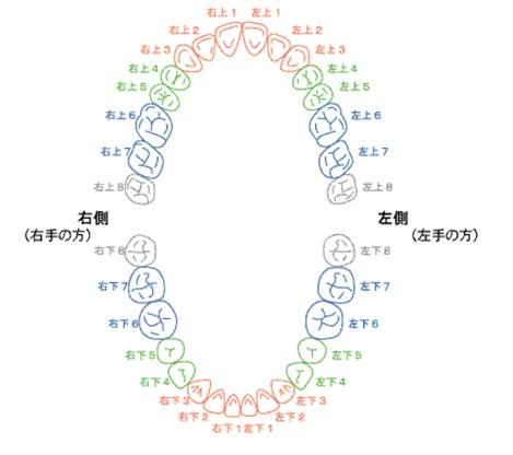 shishiki